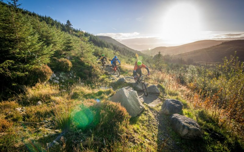 Rostrevor-Mountain-Bike-Trails-Rostrevor-Mountain-Bike-Centre